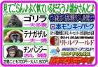 新モンパA4.jpg